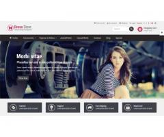 Paginas Web con Carrito de compras, Webmasters en Ramos Mejia